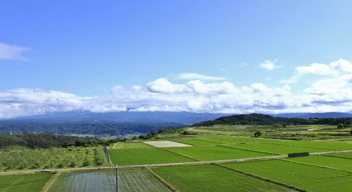 """梅雨の合間の""""ハレソラ""""に、緑かがやく田園風景。"""