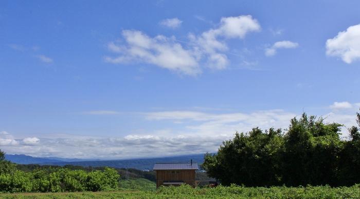 高原の風抜ける散歩道、梅雨明け間近の空に、富士の頂を望む。