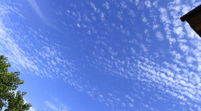 雨あがりに澄みわたる秋空は、高く、広く、果てしなく…